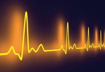 orangeheartbeat